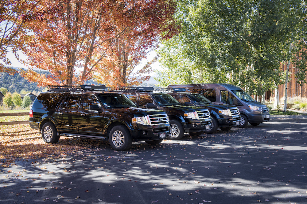 Fleet of three Ford Expeditions and Sprinter Van side